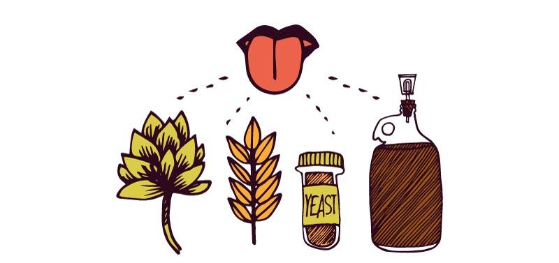 catar una cerveza artesanal - el sabor