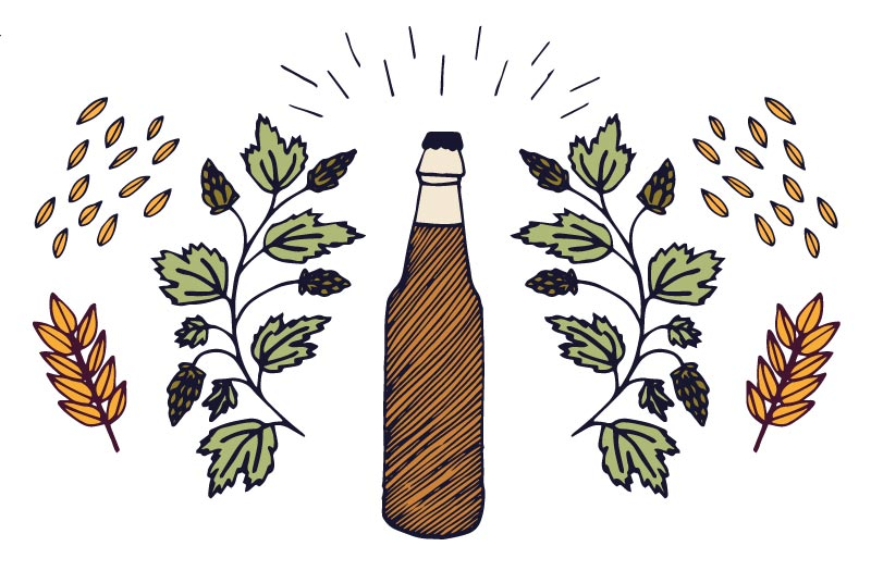 catar una cerveza artesanal cover